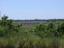 Villa-Florida25.jpg
