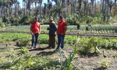 Sergiandro e Dugero da Sec. Mun. de agricultura de Paraibano em ação.
