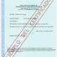 El Certificado de antecedentes penales argentino se emitirá en formato digital