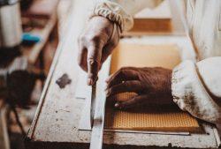 Protección social y lucha contra la precariedad laboral