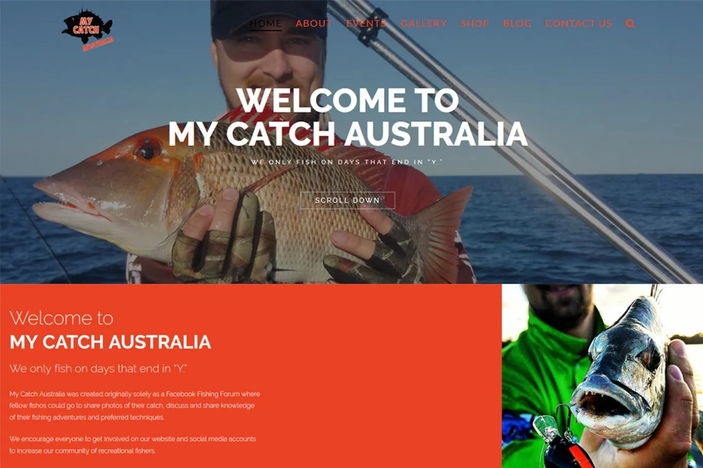 My Catch Australia | Parallax Creative Web Design