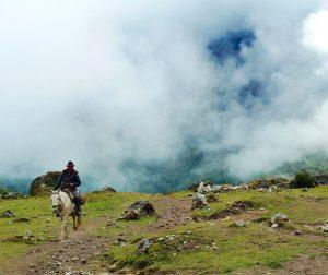 horse 802043 1920 e1544573751847 - Argentina & Patagonia