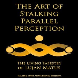 stalking-parallel-perception-audio