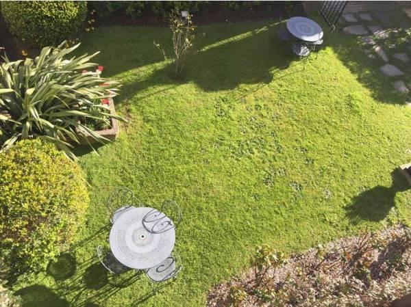 top tips gardening in hot weather