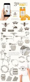 ORGANIC LOGO ELEMENTS – HONEY by Friendly Label on creativemarket
