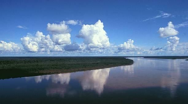 fleuve Madeira Brésil source Encarta