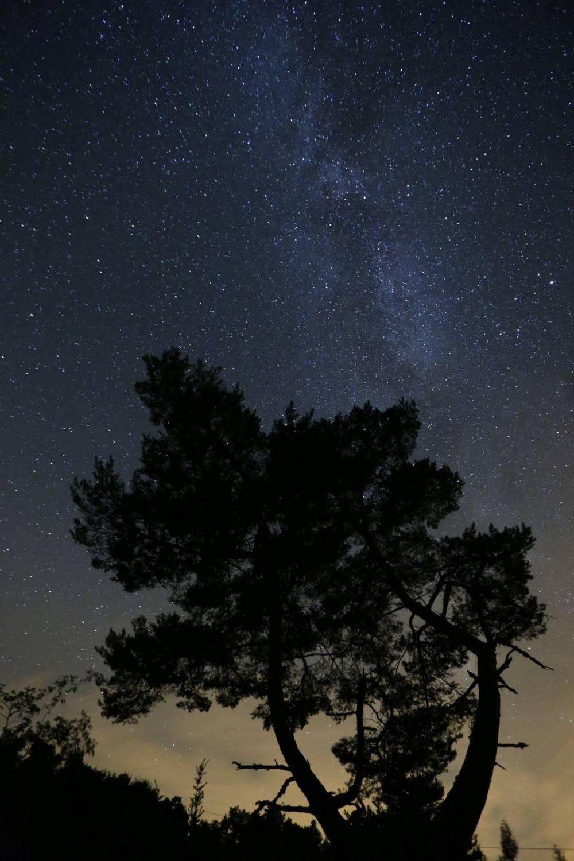 nuit ciel etoile montagne de chamouse