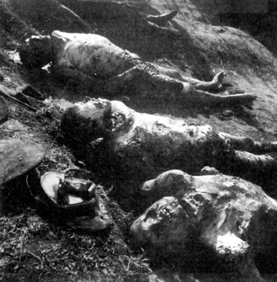 Σφαγμένα θύματα
