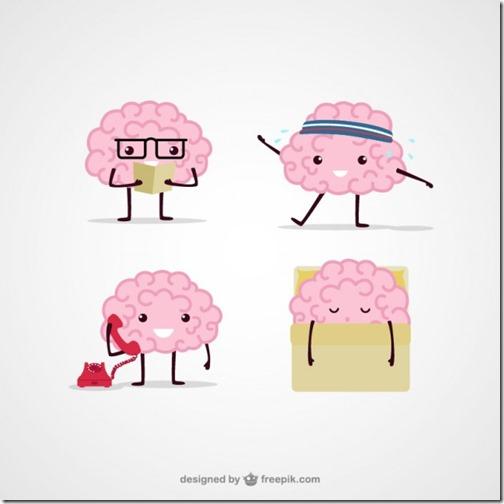 Cerveau et types d'intelligence selon Gardner