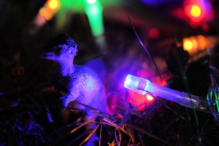 Le Judasaure, un petit dinosaure chelou qui rôde près de la crèche, sûrement en train de préparer un mauvais coup