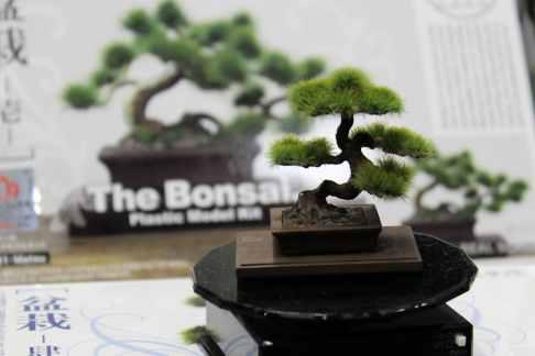 Nouveau : la maquette de bonsaï