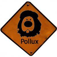 logo_pollux