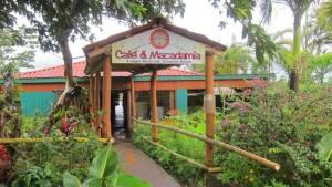 Parenthood and Passports- Cafe y Macadamia Costa Rica