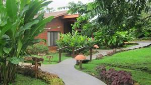 Parenthood and Passports - Hotel Silencio del Campo Costa Rica