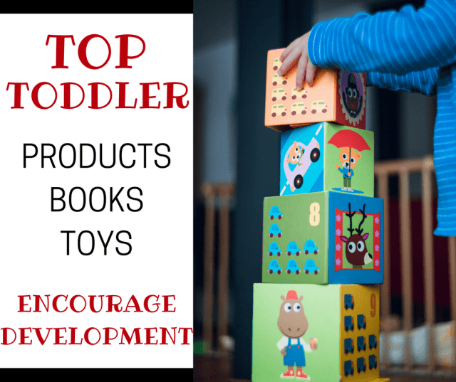 Top Toddler Products