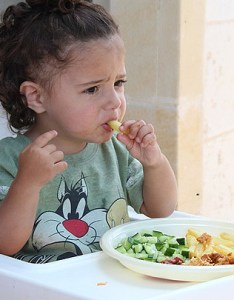 year old child requires various nutrients for his body growth this is the when he comes out of milk feed period also diet plan baby healthy toddlers meal rh parentingnation