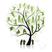POP family tree