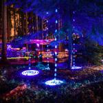 Burien Arts A Glow Lantern Festival Seattle Area Family Fun Calendar Parentmap