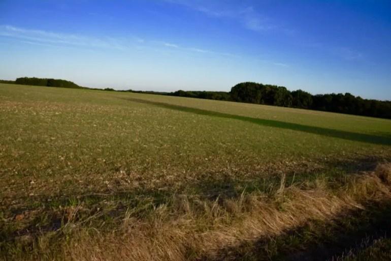 blog-de-voyage-campagne-beauce-voyage-en-famille-nature-champs-champs-de-ble-voyage-et-enfantthumb_dsc_0535_1024