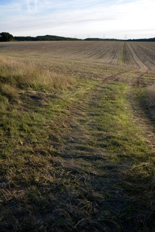 blog-de-voyage-campagne-beauce-voyage-en-famille-nature-champs-champs-de-ble-voyage-et-enfantthumb_dsc_0537_1024