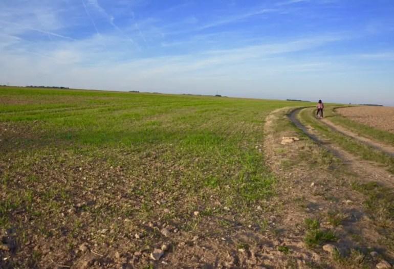blog-de-voyage-campagne-beauce-voyage-en-famille-nature-champs-champs-de-ble-voyage-et-enfantthumb_dsc_0539_1024