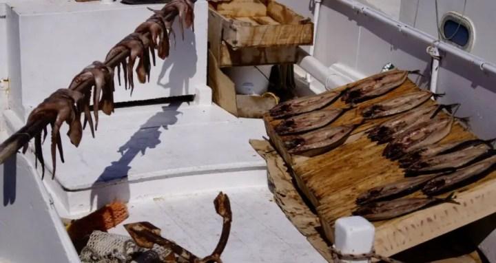 grece-blog-de-voyage-paors-les-cyclades-mer-plage-vacances-plage-paradisiaqueeurope-mediteranneevoyage-en-famillethumb__dsc5501_1024