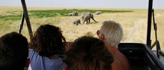 famille dans une voiture safari en tanzanie, un safari en Tanzanie