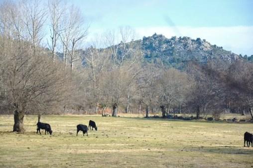 Navacerrada , vie en Espagne expatrie blog voyage en famille