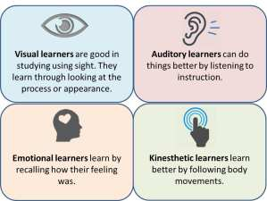 4 types of learners