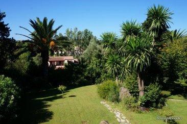 corfu-club-garden