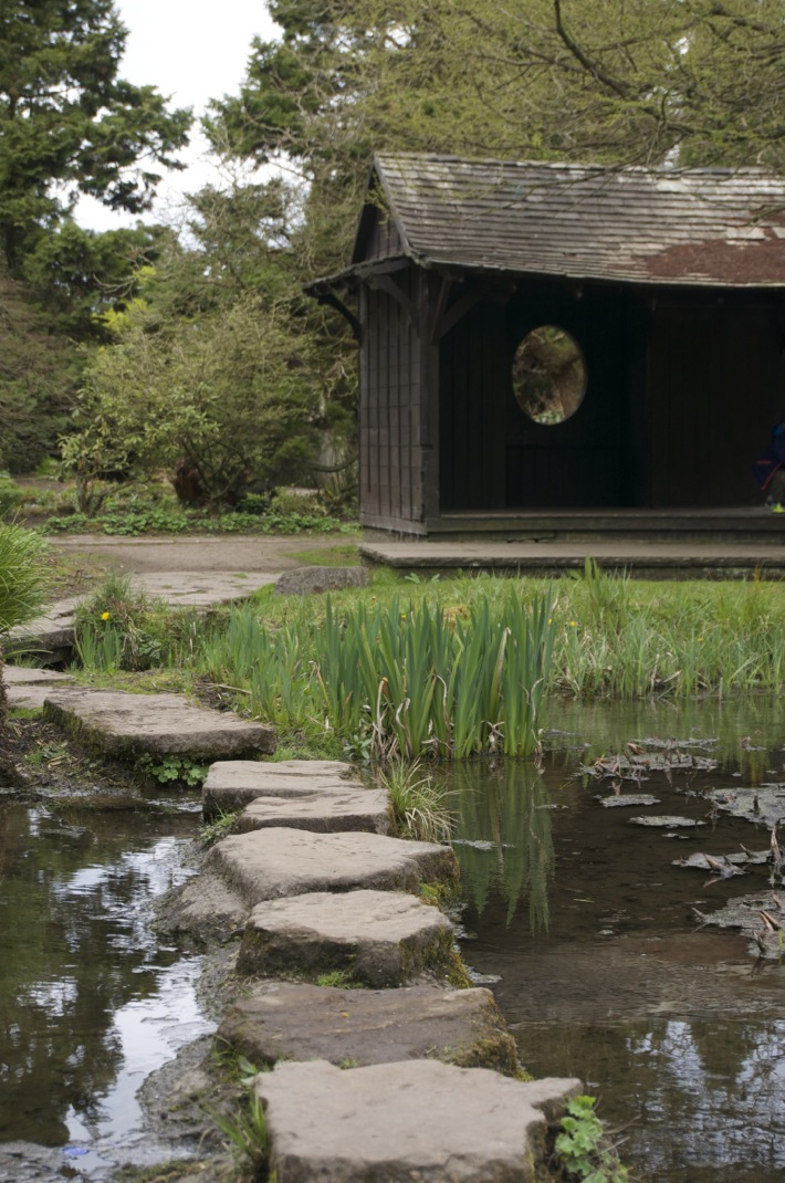 Newstead Abbey Nottinghamshire pictures - 6