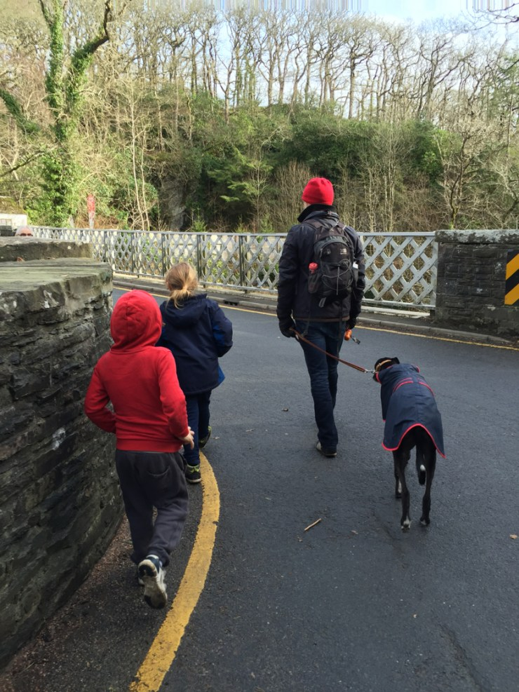 Exploring the setting of HInterland and Devils Bridge, Ceredigion, Wales