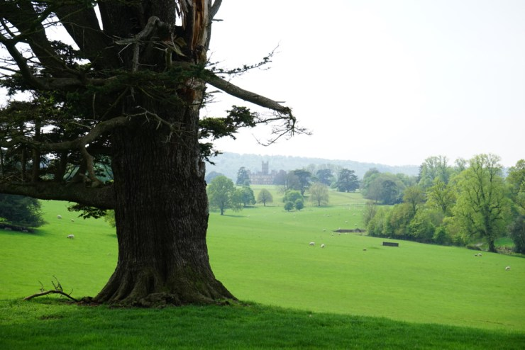highclere-castle-and-capability-brown-6