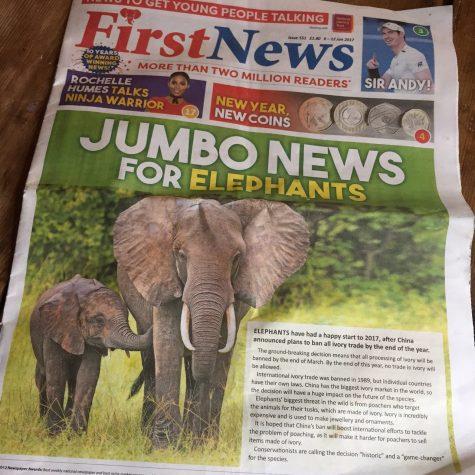 Elephants and Ivory, breaking news