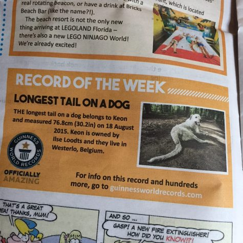 Guinness World Record Dog Facts!
