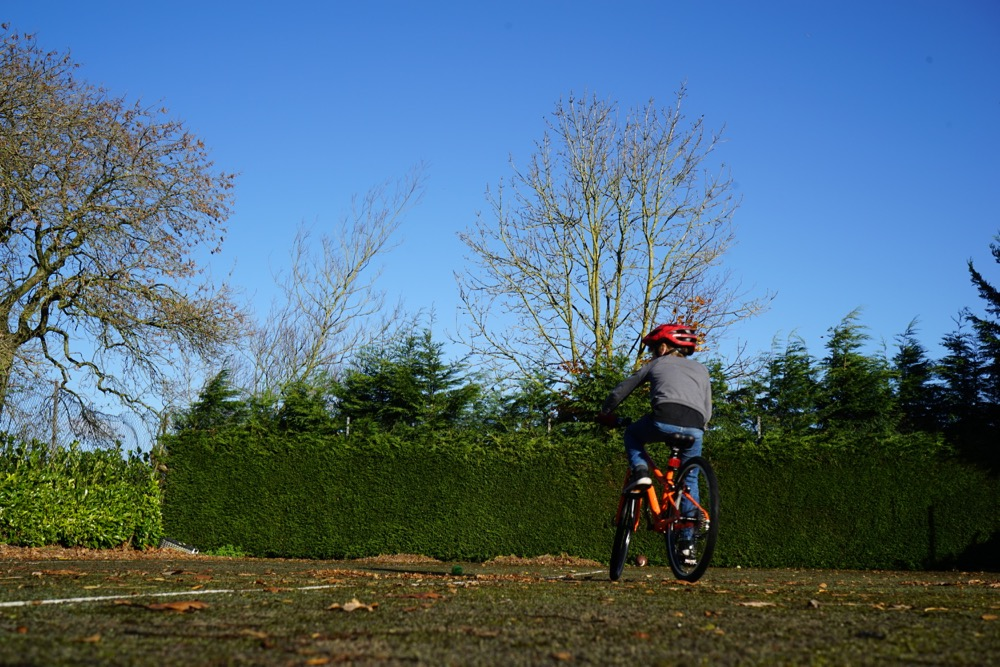 "kids bikes, the Halfords Carrera Abyss 24"" reviewed"