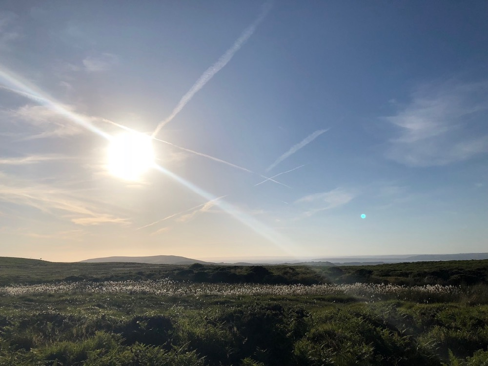 Family break in Swansea, Mumbles, and the Gower Peninsula - 31