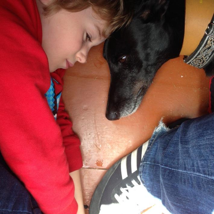 Dog friendly Lake District