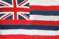 Hawaiian Flag Sarong