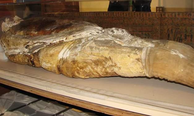 Adipocere: La saponificazione dei cadaveri