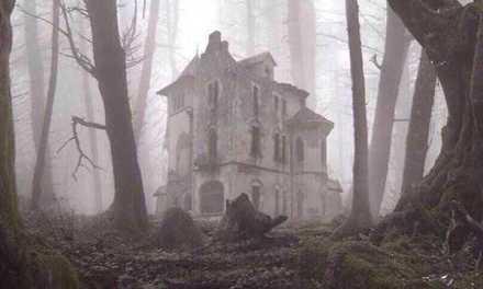 Vieni .. c'è una casa nel bosco ..