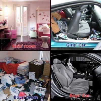 forskellen melllem mænd og kvinder