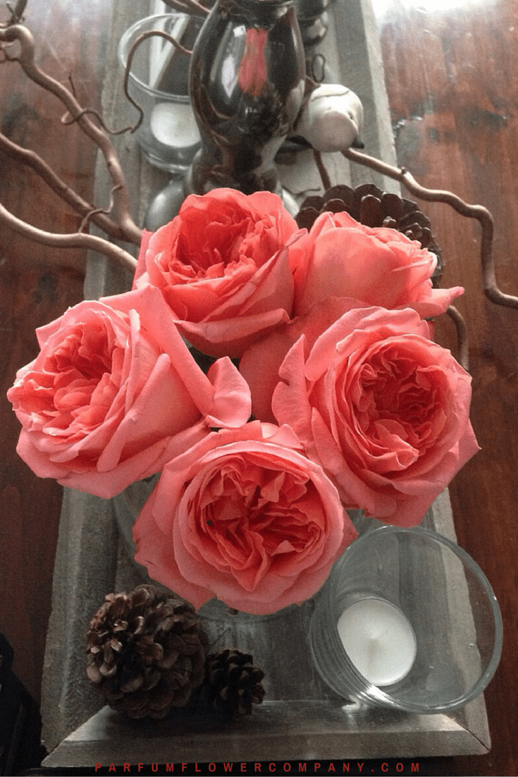 Rose Rene Goscinny