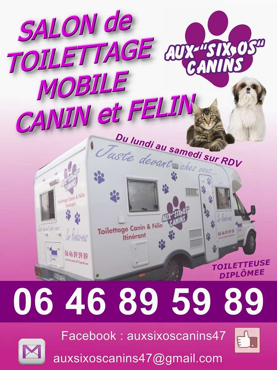 Aux Six Os Canins