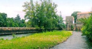 Visite du moulin de Saint-Vite avec l'office de tourisme - 23/06/2017 - ladepeche.fr