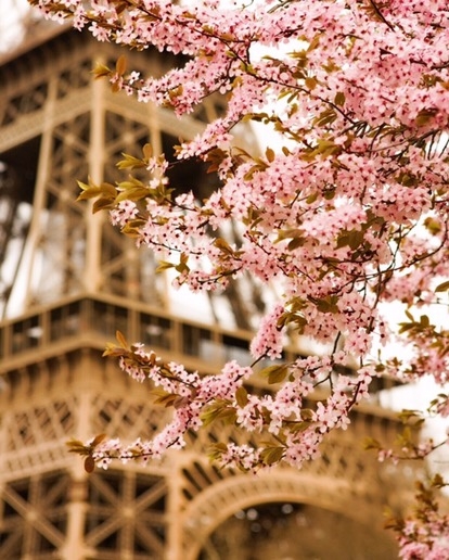 Why Paris & June Exists and What Inspired It's Creation