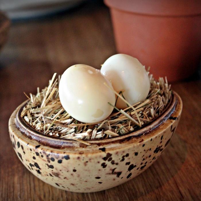 noma eggs