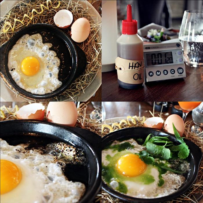 noma fried egg