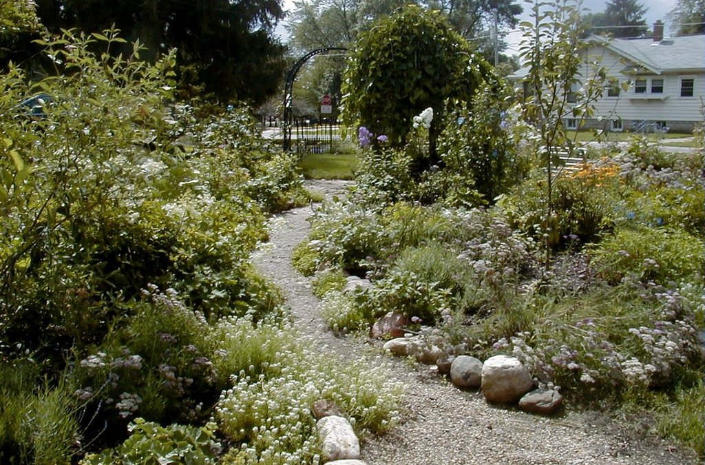Mon Jardin... an update | Parisienne Farmgirl