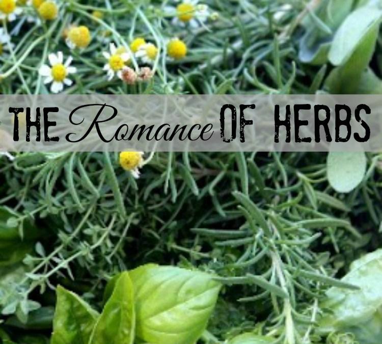 The Romance of Herbs | Parisienne Farmgirl